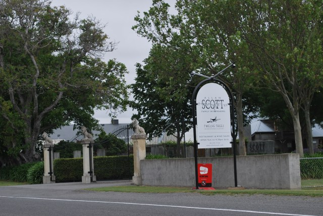 When we planned our NZ trip, I imagined I'd stop in at Allan Scott, whose sauvignon blanc was the first Kiwi wine I can remember having. I felt a little bit guilty as we drove past and pulled in across the road at Cloudy Bay.