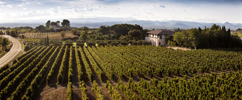 Chateau Paul Mas, Vignes de Nico le & Côté Mas restaurant (2)